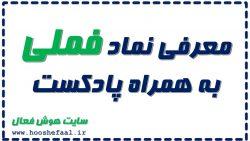 معرفی شرکت ملی صنایع مس ایران با نماد فملی همراه با پادکست